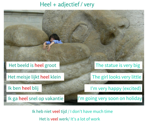 Learn Dutch - heel + adjectief